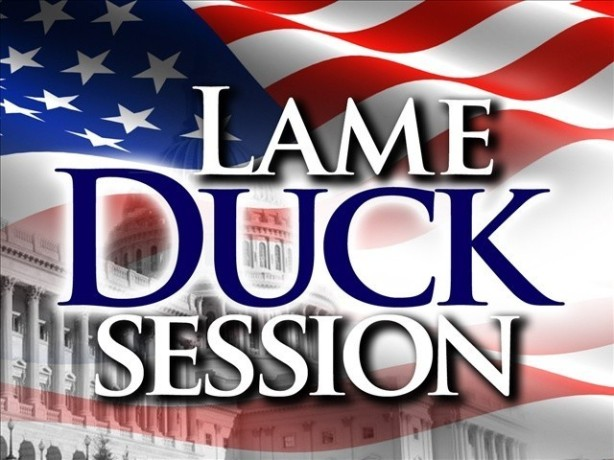 National Lame Duck Day